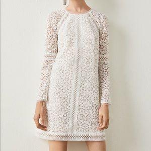 BCBGMaxAzria Mosaic Lace Shift Dress
